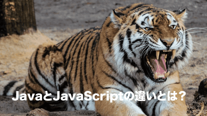javaとjavascriptの違い