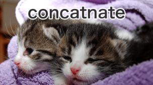 linux catコマンド