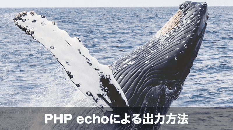 phpでのechoによる出力