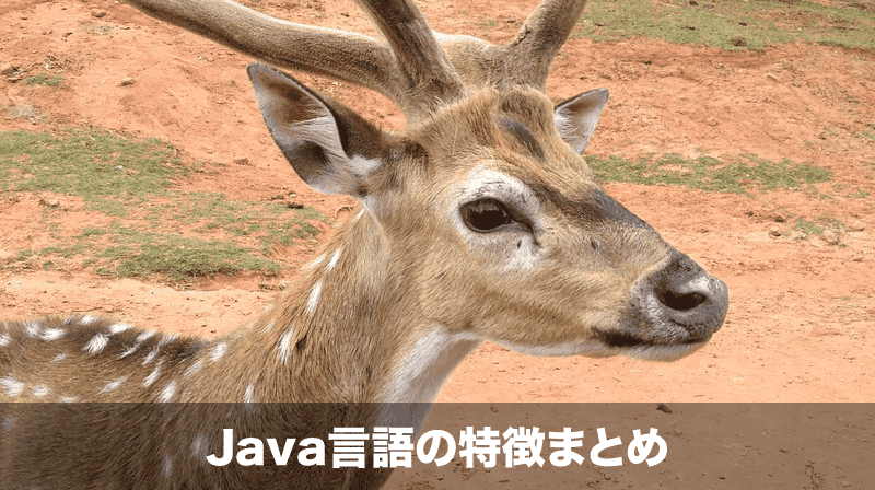 java-feature