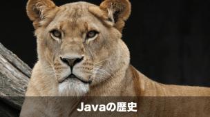 javaの歴史