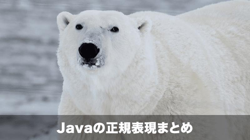Javaの正規表現
