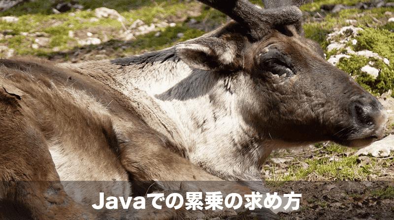 java_pow