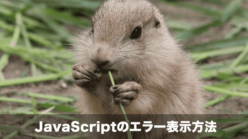 javascriptエラー表示方法