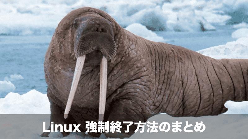 linux強制終了方法