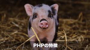 phpの特徴