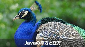 Javaの平方根と立方根