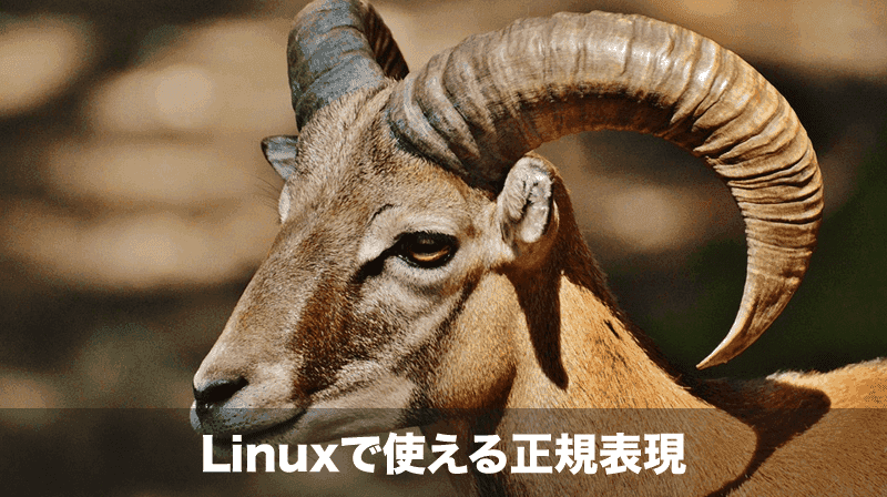 linuxで使える正規表現