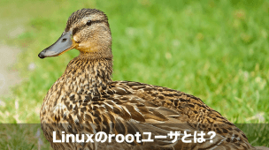 rootユーザとは
