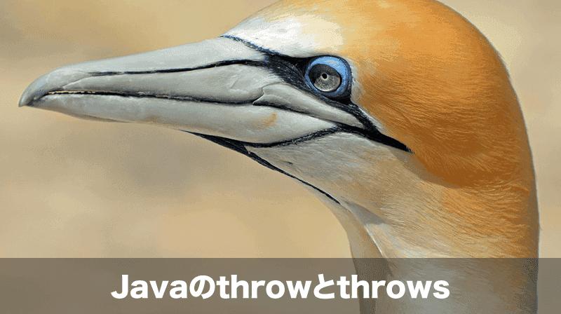 throw-throws
