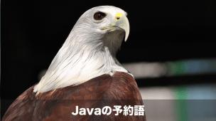 Java予約語