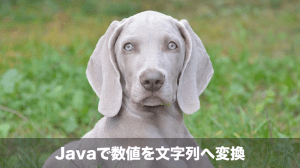 javaで数値を文字列に変換