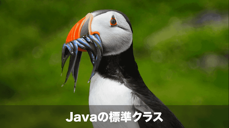java-standard-class