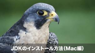 jdk インストール mac編