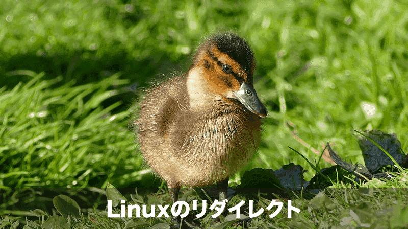 Linuxのリダイレクト