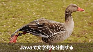 Javaで文字を分割するsplit