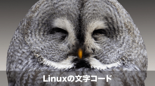 linuxの文字コード