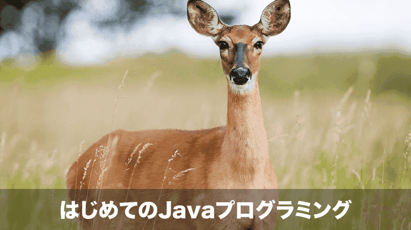 はじめてのJavaプログラミング