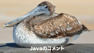 Javaのコメント