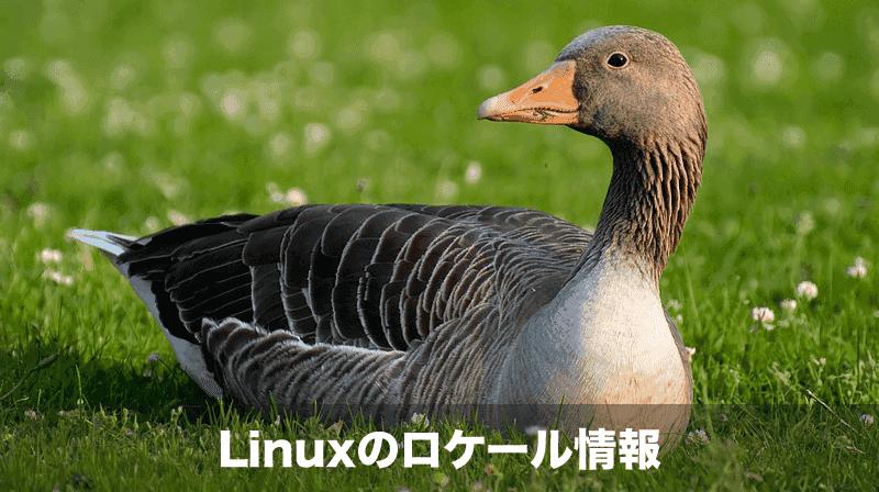 linux ロケール情報