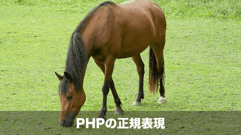 PHPの正規表現