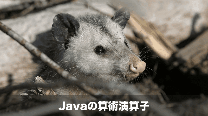 javaの算術演算子