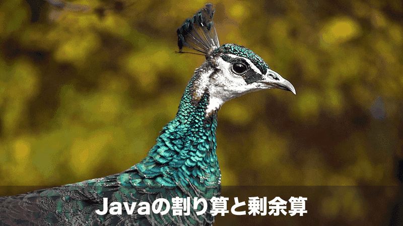 Javaの割り算と剰余算の注意点