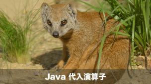 Javaの代入演算子