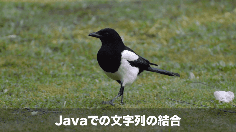 java文字列の結合