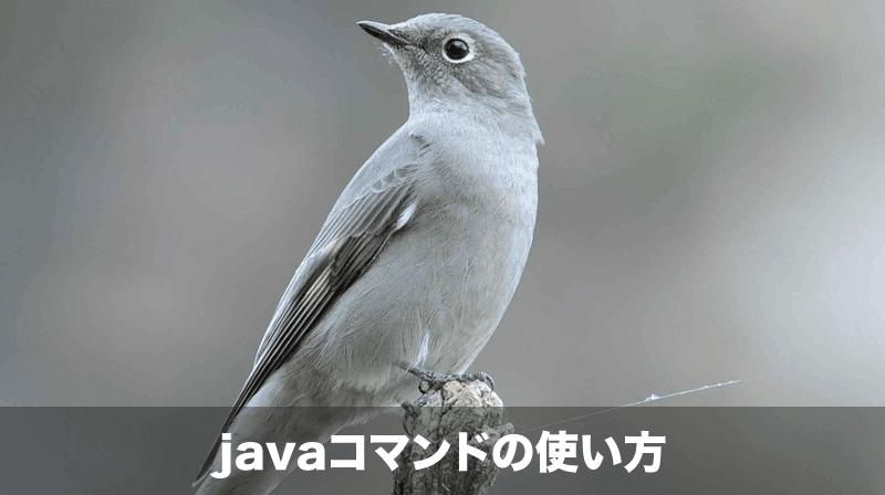 Javaコマンド
