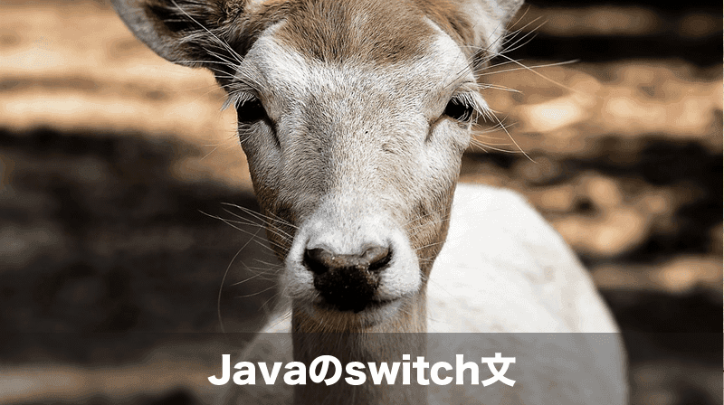 javaのswitch