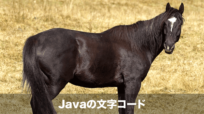 Javaの文字コード