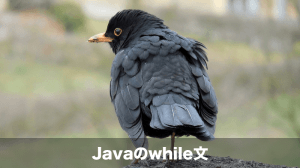 javaのwhile文