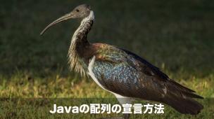 Javaの配列の宣言方法