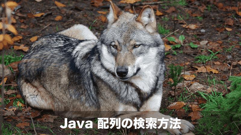 Java 配列の検索方法