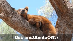 debianとubuntuの比較