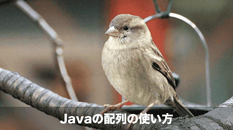 Javaの配列の使い方