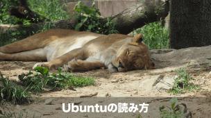 ubuntuの読み方
