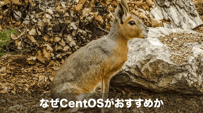 なぜ初心者にCentOSがおすすめか