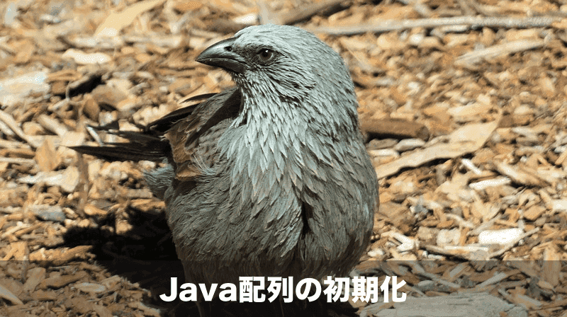 java配列の初期化