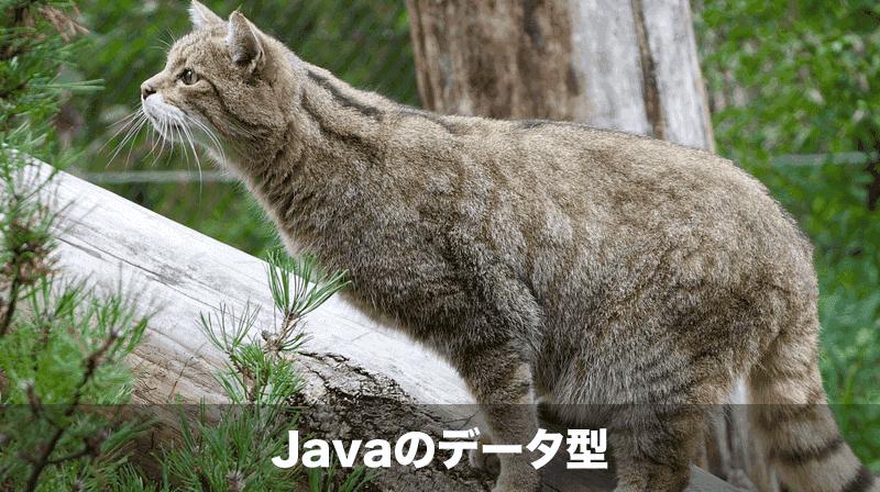 Javaのデータ型