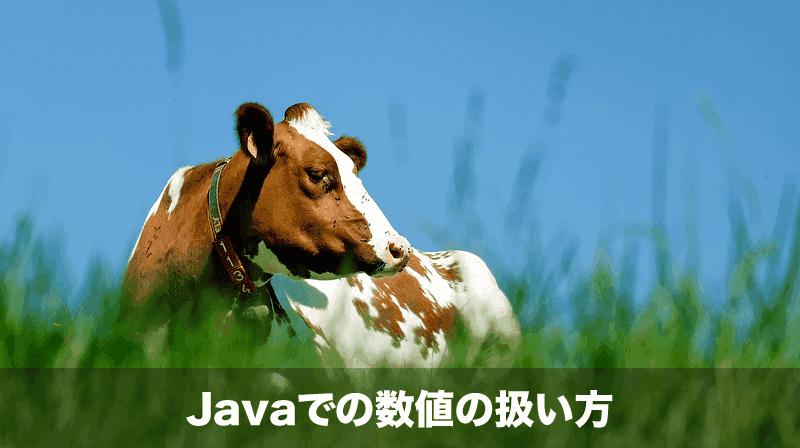 javaでの数値の扱い方