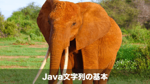 java文字列の基本