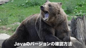 javaのバージョンの確認方法