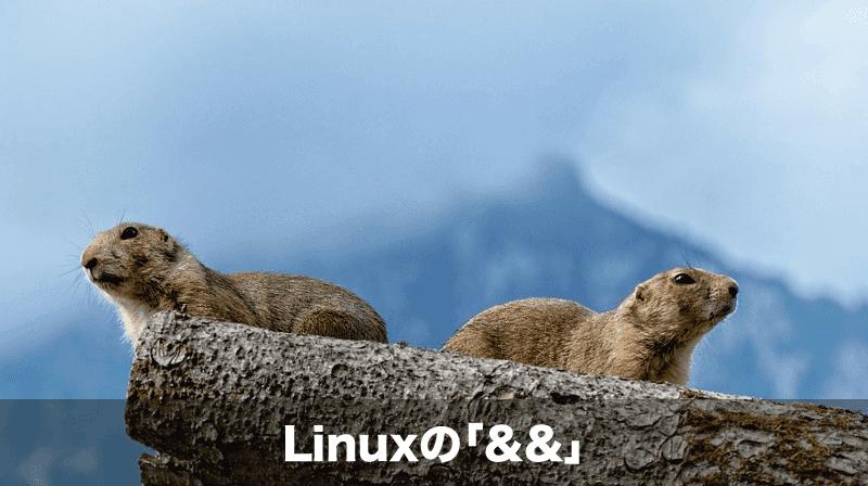 linux &&