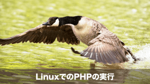 linuxでのphpの実行