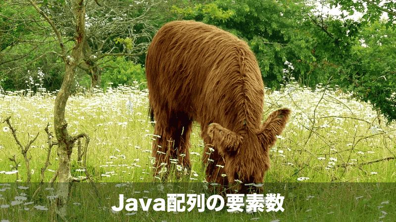 Java配列の演算子