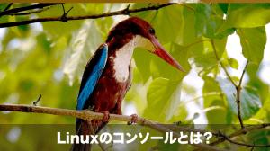 Linuxのコンソールとは