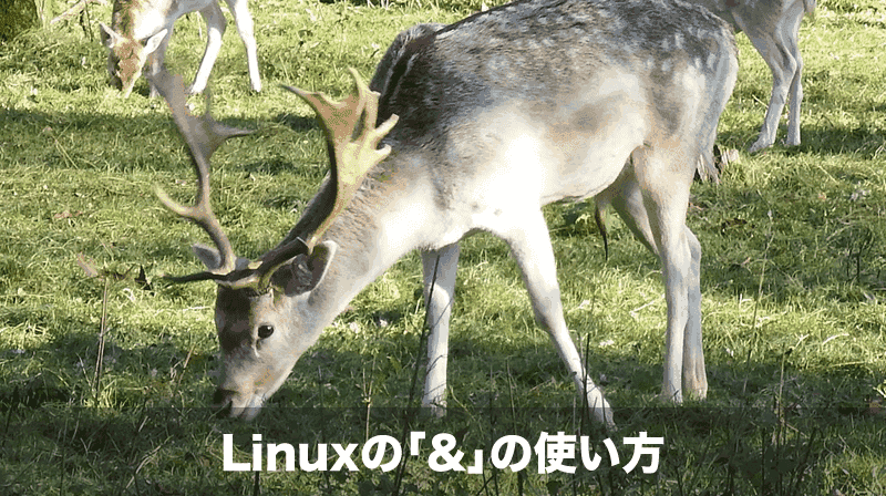 linux-and