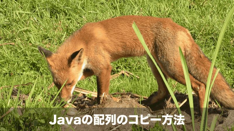 javaの配列のコピー方法